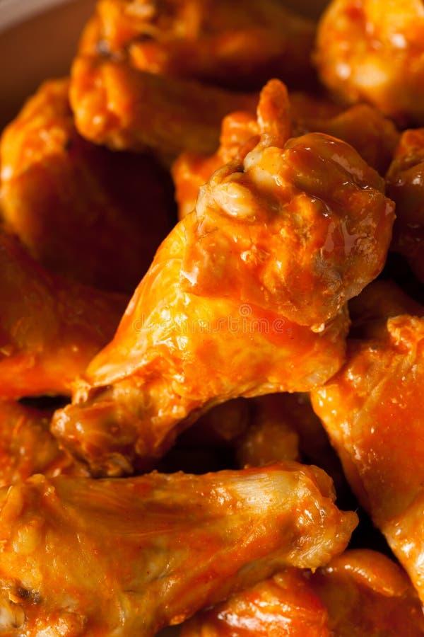Asas de frango fritas caseiros picantes fotografia de stock royalty free