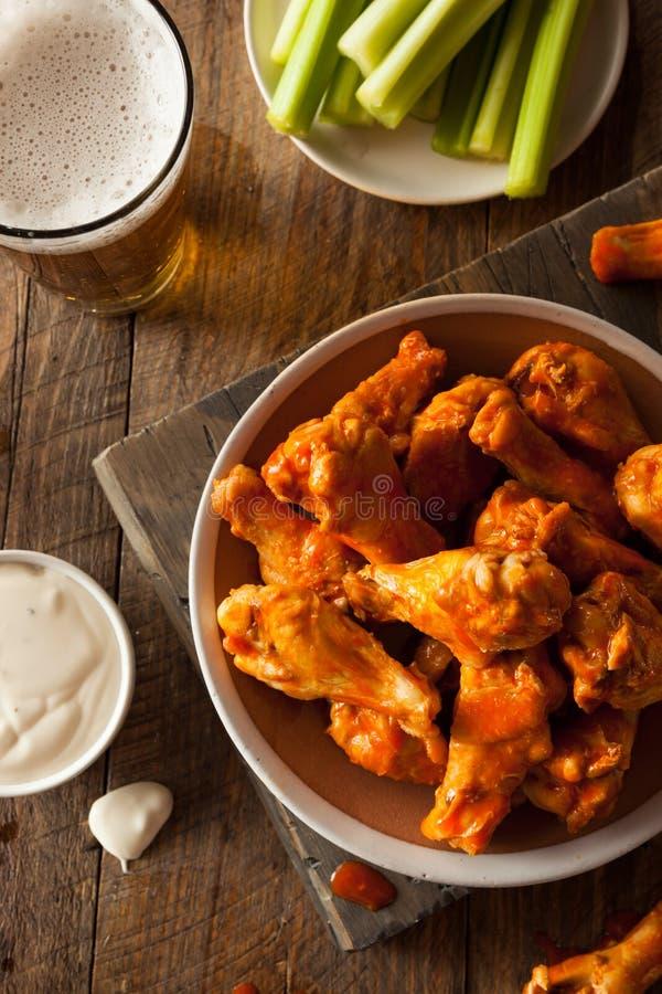 Asas de frango fritas caseiros picantes fotos de stock