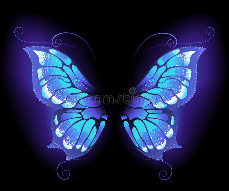 Asas de incandescência da borboleta