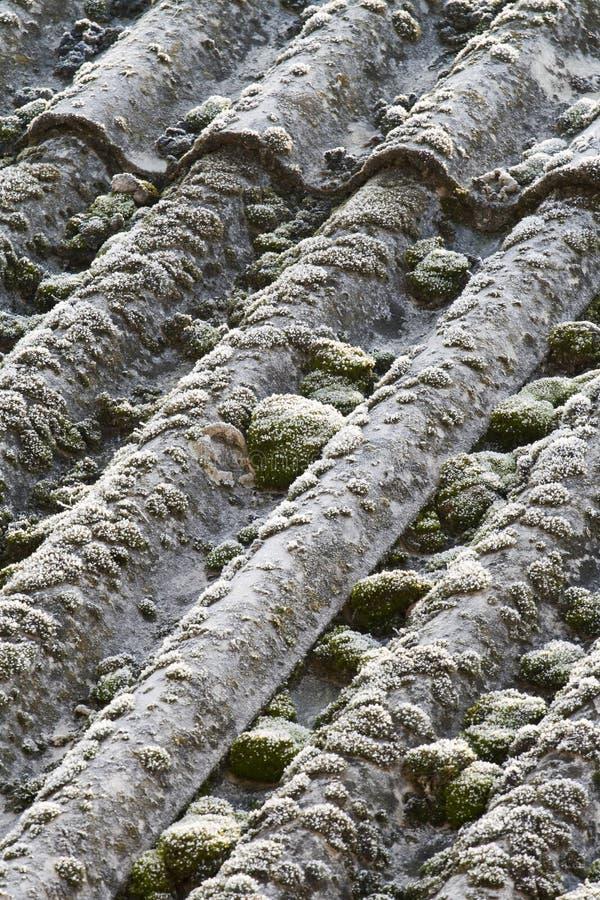 Asbestos Roof Eternit Stock Image Image 23059871