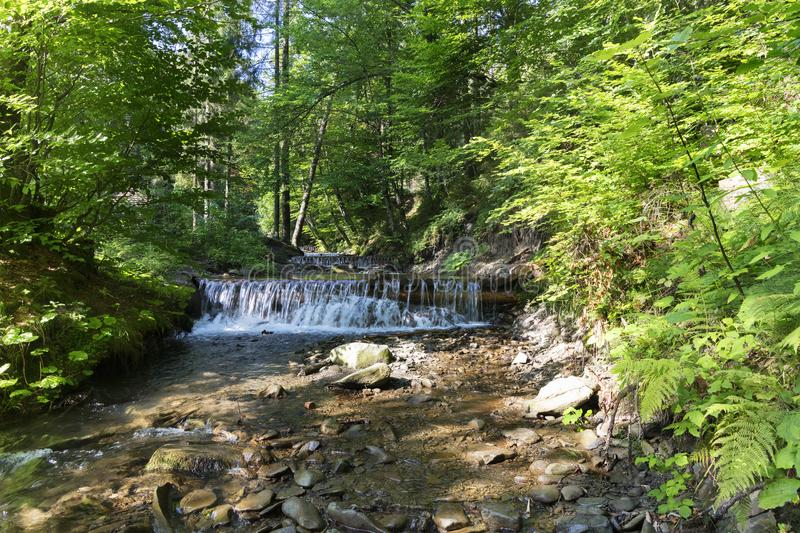 ?ascading waterfall of a mountain stream in the Carpathians stock image
