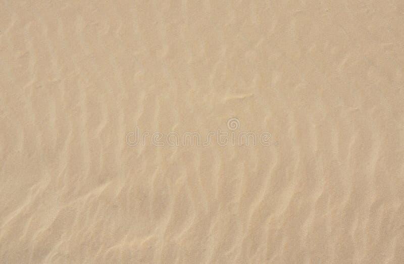 Ascendente cercano de la arena fotografía de archivo libre de regalías