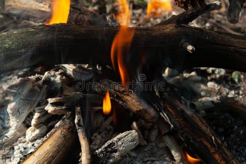 Ascendente cercano del fuego fotografía de archivo