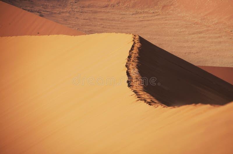 Ascendente próximo da duna fotos de stock
