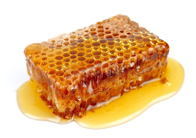 Ascendente próximo do favo de mel imagem de stock
