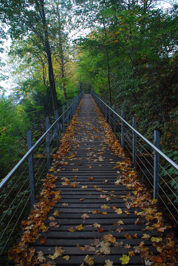Download Ascending bridge stock photo. Image of metal, sunny, disappear - 7981886