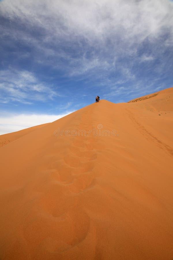 Ascending desert dune stock photography