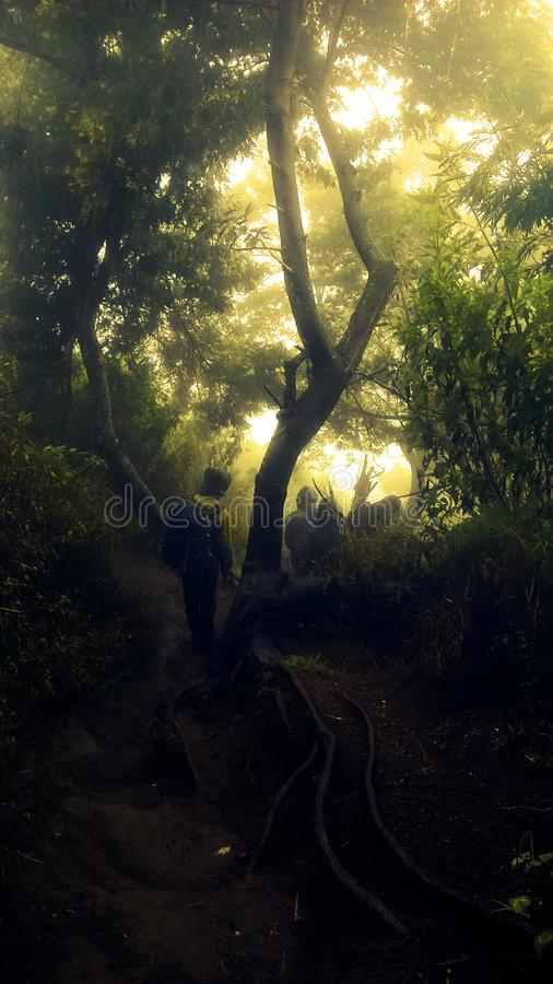 The ascent of Mount Merbabu boyolali in Central Java Mount Merbabu is one of the highest mountain in Central Java. Between the towns of magelang, Salatiga and royalty free stock image
