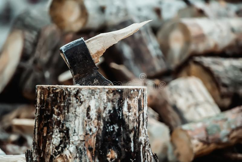 Ascia rotta quando tagliano legno a pezzi Il taglialegna ha rotto lo strumento fotografia stock
