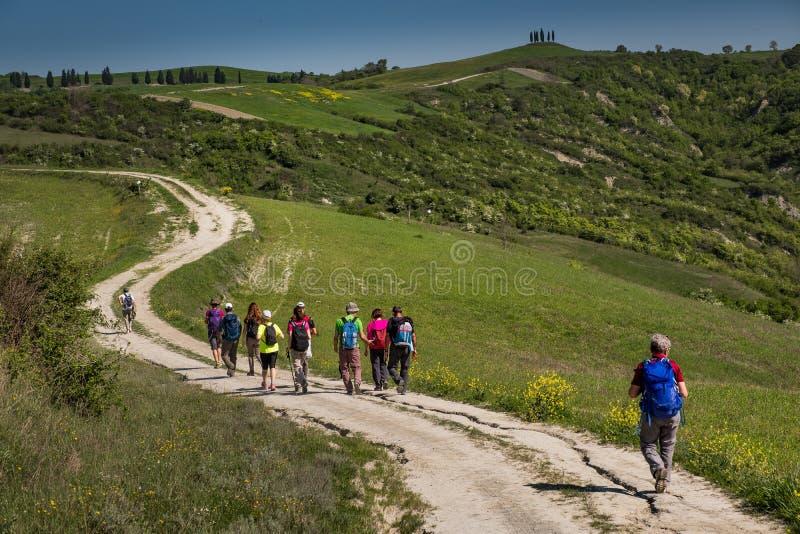 ASCIANO, ТОСКАНА, Италия - trekking, неизвестные люди идя вперед стоковое изображение rf