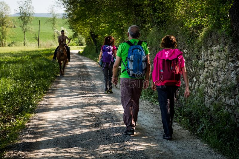 ASCIANO, TUSCANY, Italy - Trekking, unknown people walking royalty free stock image