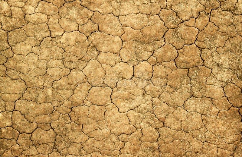 Asciughi la priorità bassa astratta naturale incrinata del fango. immagine stock