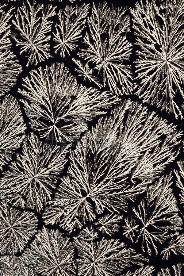 Ascorbinsäurekristalle stockfotografie