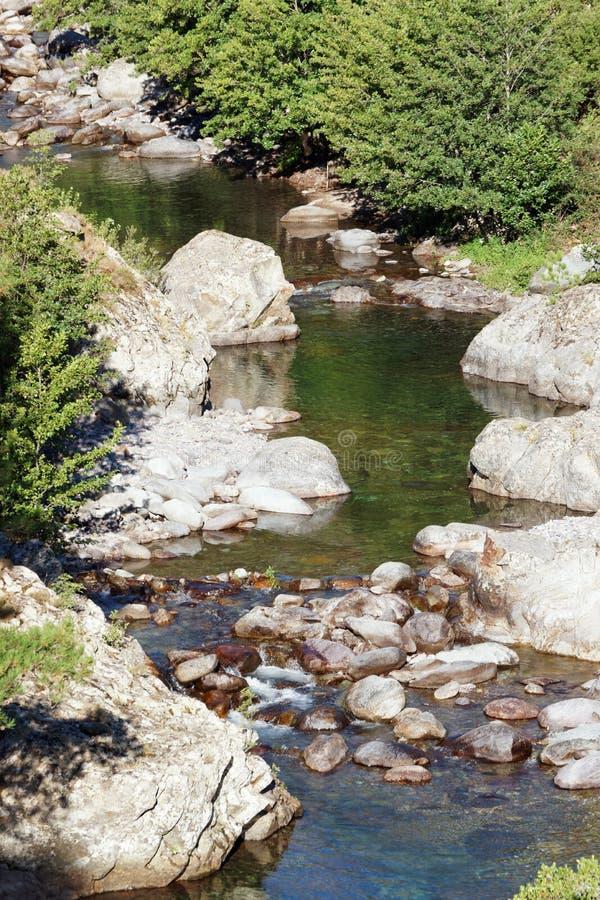Ascorivier in Corsica montains stock afbeelding