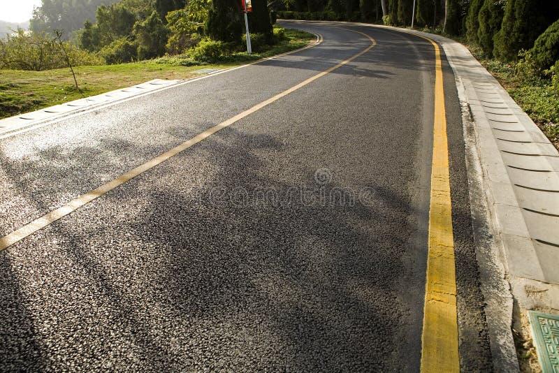 asfalt obraz royalty free