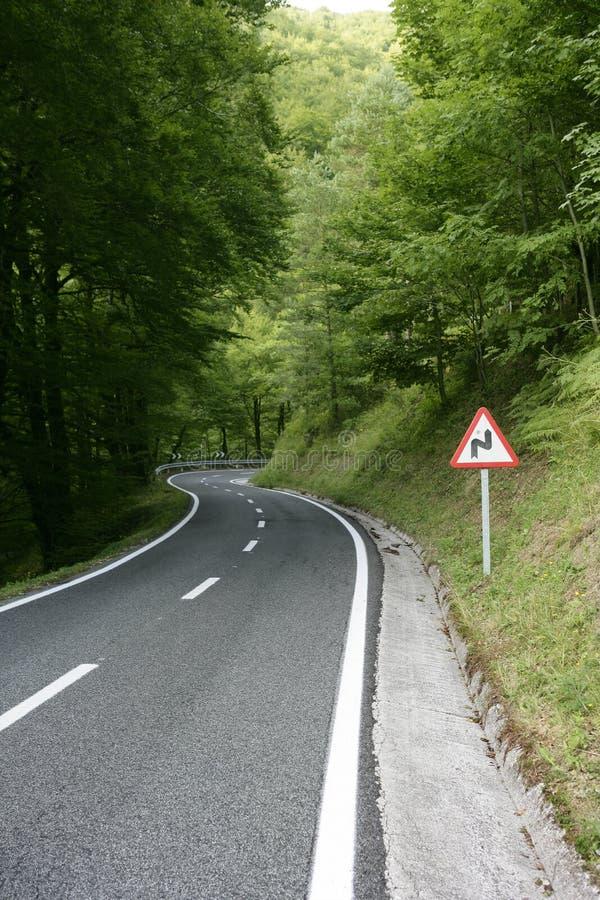 Asfalte a estrada da curva do enrolamento em uma floresta da faia fotos de stock