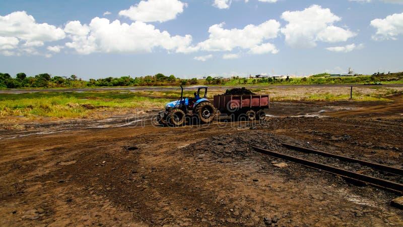 Asfaltera att bryta i grad sjön, La Brea i Trinidad och Tobago fotografering för bildbyråer