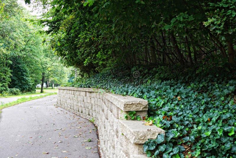 Asfaltgang tussen de weg en de steenomheining de groene klimop hangt over de omheining stock afbeelding