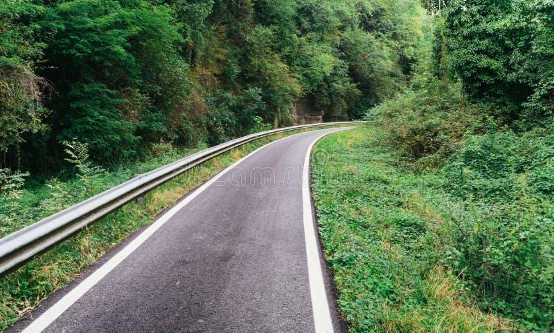 Asfalti la pista ciclabile nel legno in Italia del Nord immagine stock