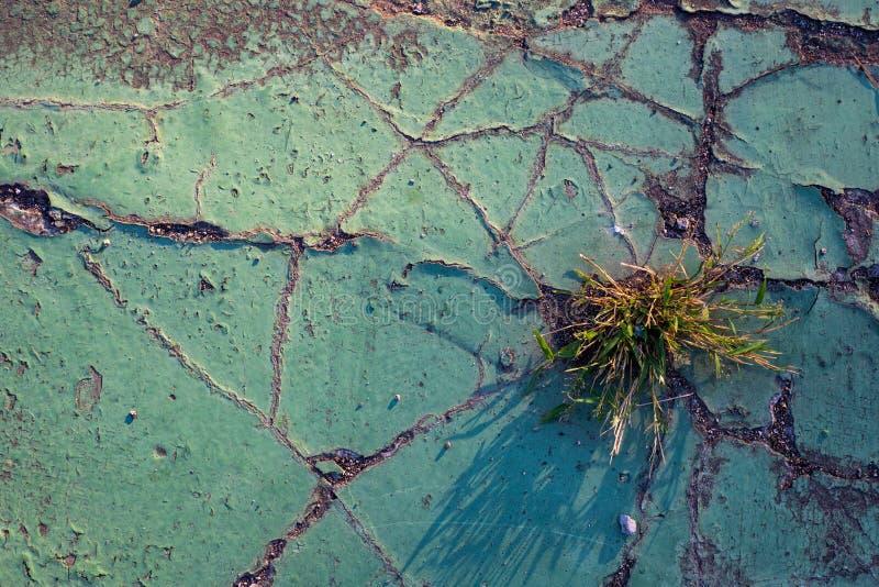 Asfalto verde com quebras e grama Textura da foto da opinião superior do assoalho do cimento Superfície velha rústica para o fund foto de stock