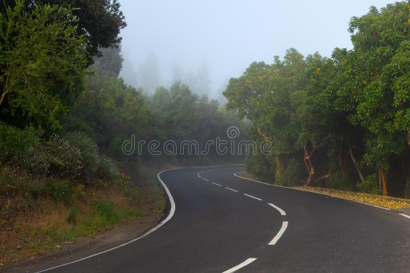 Asfaltowa droga opuszcza w odległość fotografia stock