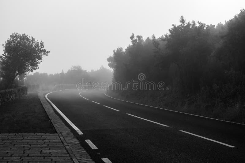 Asfaltowa droga opuszcza w odległość zdjęcia royalty free