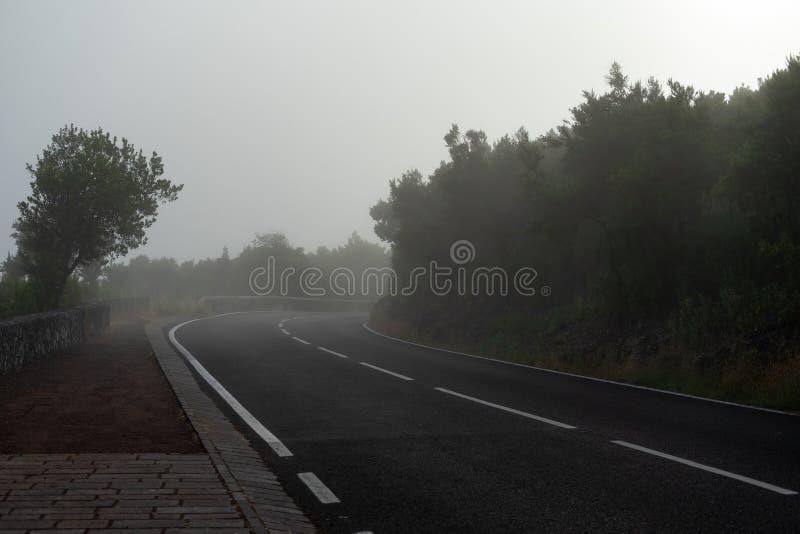 Asfaltowa droga opuszcza w odległość zdjęcie stock