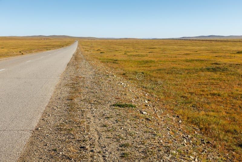 Asfaltowa droga w Mongolskim stepie obrazy royalty free