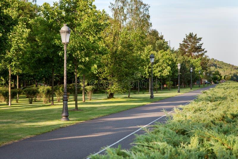 Asfaltowa droga z białymi ocechowaniami w parku fotografia stock