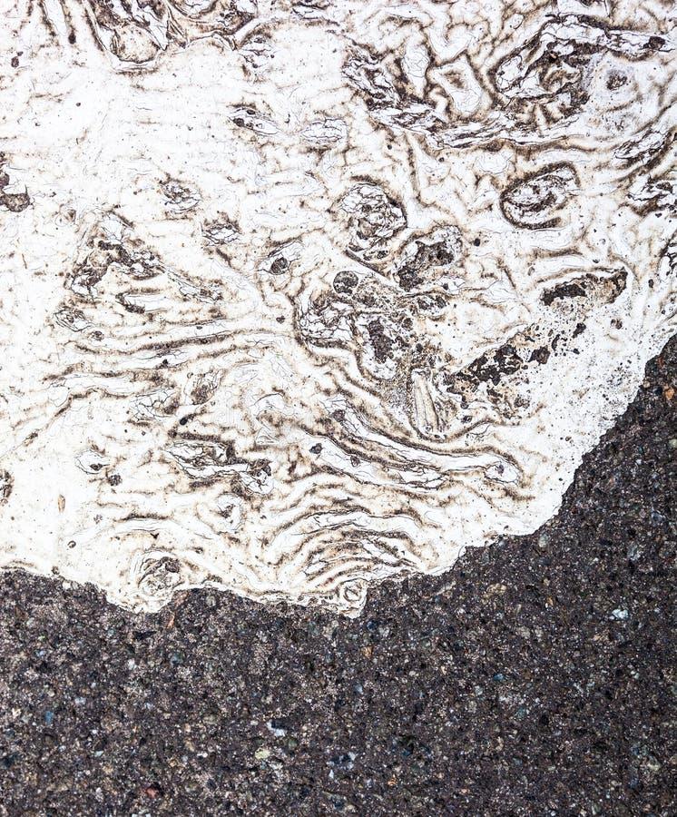 Asfaltowa powierzchnia z punktem biała farba zdjęcia stock