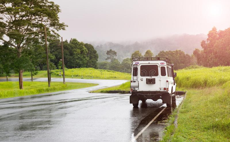 Asfaltroat i nationalparkskog royaltyfria foton