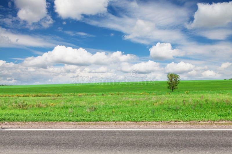 Asfaltväg, fält för grönt gräs och himmel med moln royaltyfri fotografi