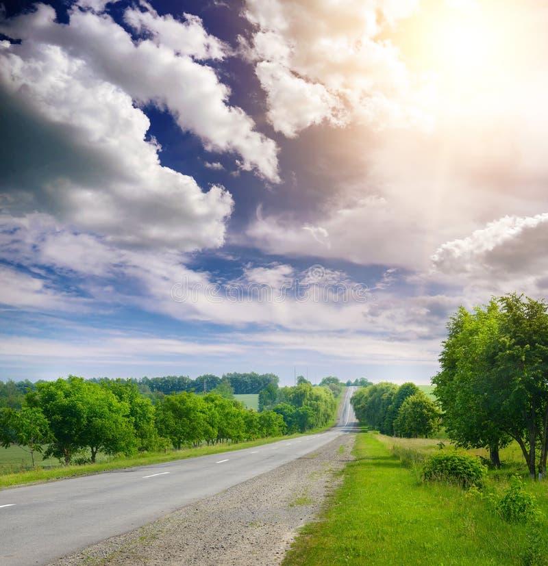 Asfaltväg i bygd till och med gröna fält arkivfoton