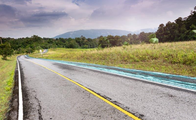 Asfaltväg i nationalparkskog royaltyfria foton