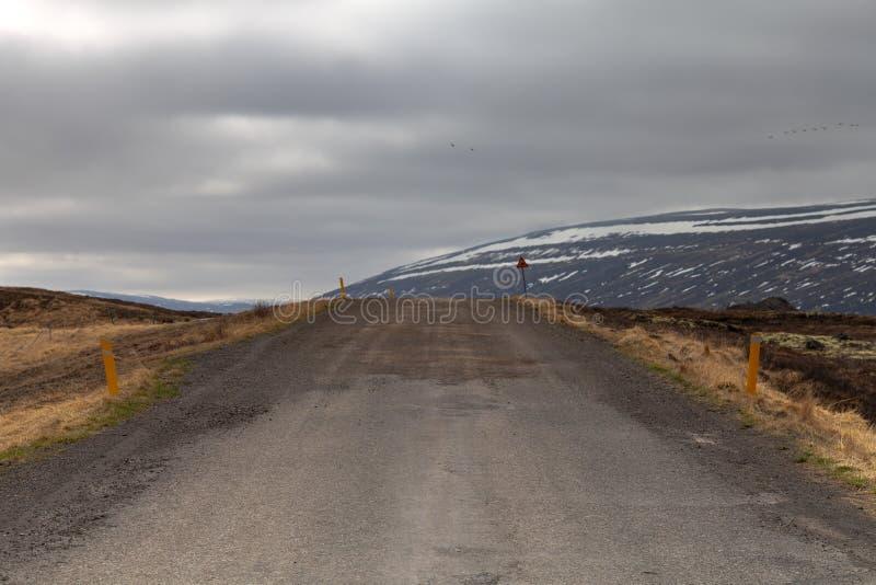 Asfaltweg op het mooie landschap in het oosten van IJsland stock afbeeldingen