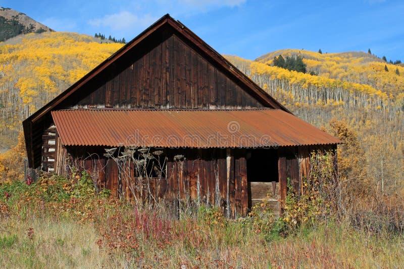 Ashcroftspookstad, Colorado royalty-vrije stock afbeeldingen