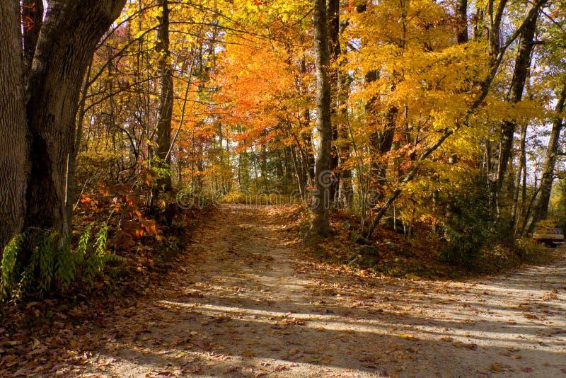 asheville ścieżka halna pobliski północna Carolina zdjęcie stock