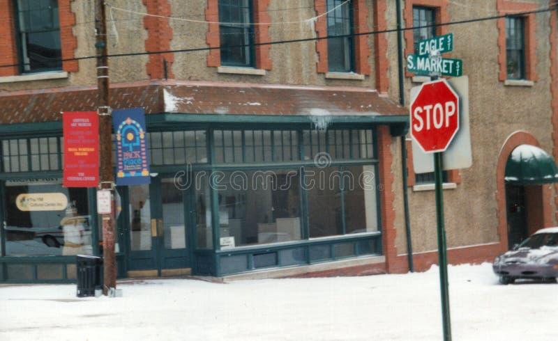 Asheville afrikan Art Center During Winter royaltyfria bilder