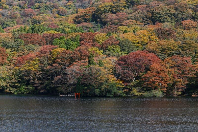 Ashi jezioro, Japonia obrazy stock