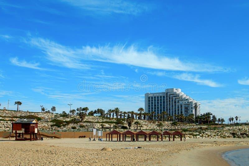 Ashkelon-Straße mit Palmen lizenzfreie stockfotos