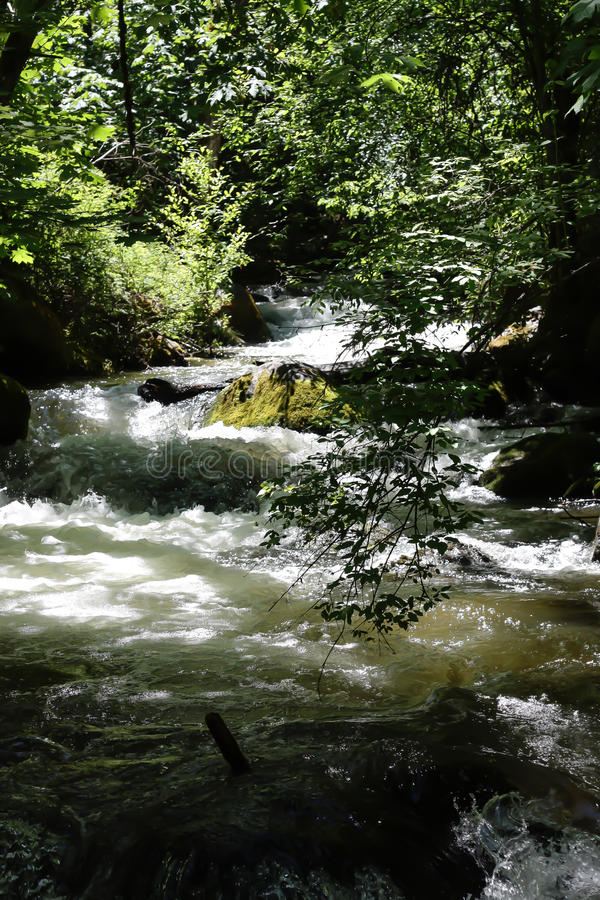 Ashland Creek at Lithia Park stock image