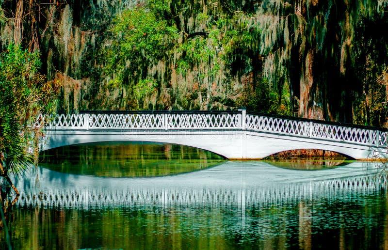 Ashley River Bridge royalty-vrije stock afbeeldingen