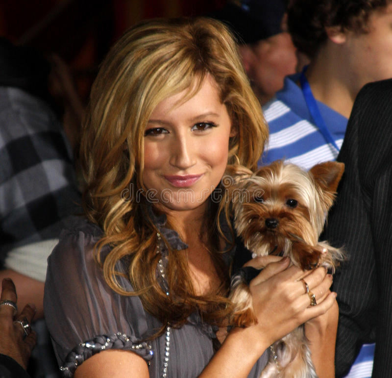Ashley Tisdale imagem de stock royalty free