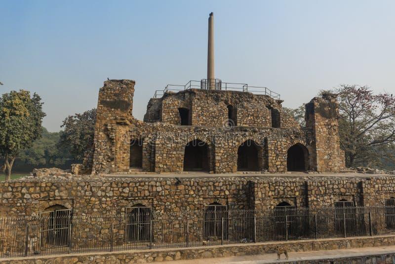 Ashoka filar na ostrosłupowej strukturze i psie w Feroz Shah Kotla zdjęcie stock