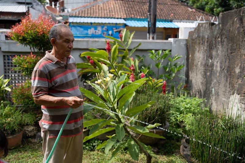 Asiático del hombre mayor que riega su jardín fotos de archivo