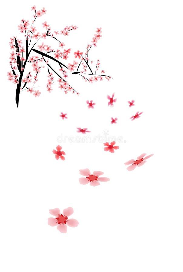 Asiático hermoso Sakura libre illustration