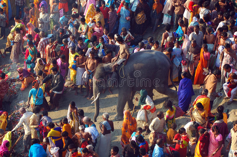 Asia's biggest cattle fair. November 13, 2008-Sonepur, Bihar, India - Pilgrimage are gathering for holy bath at the Ganges river of Sonepur-Bihar. The royalty free stock photo