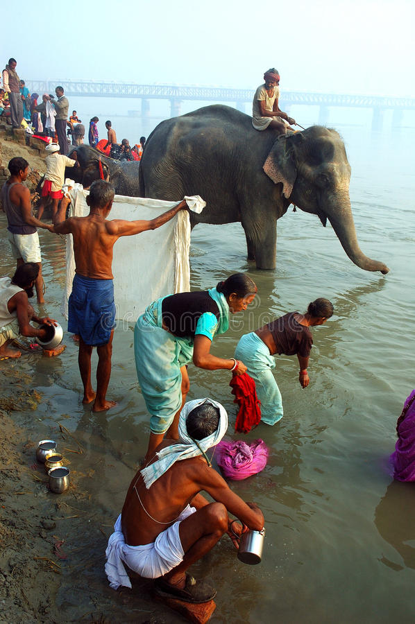 Asia's biggest cattle fair. November 13, 2008-Sonepur, Bihar, India-People bathin at the Ganges river during the Sonepur festival. The Sonepur festival royalty free stock photography