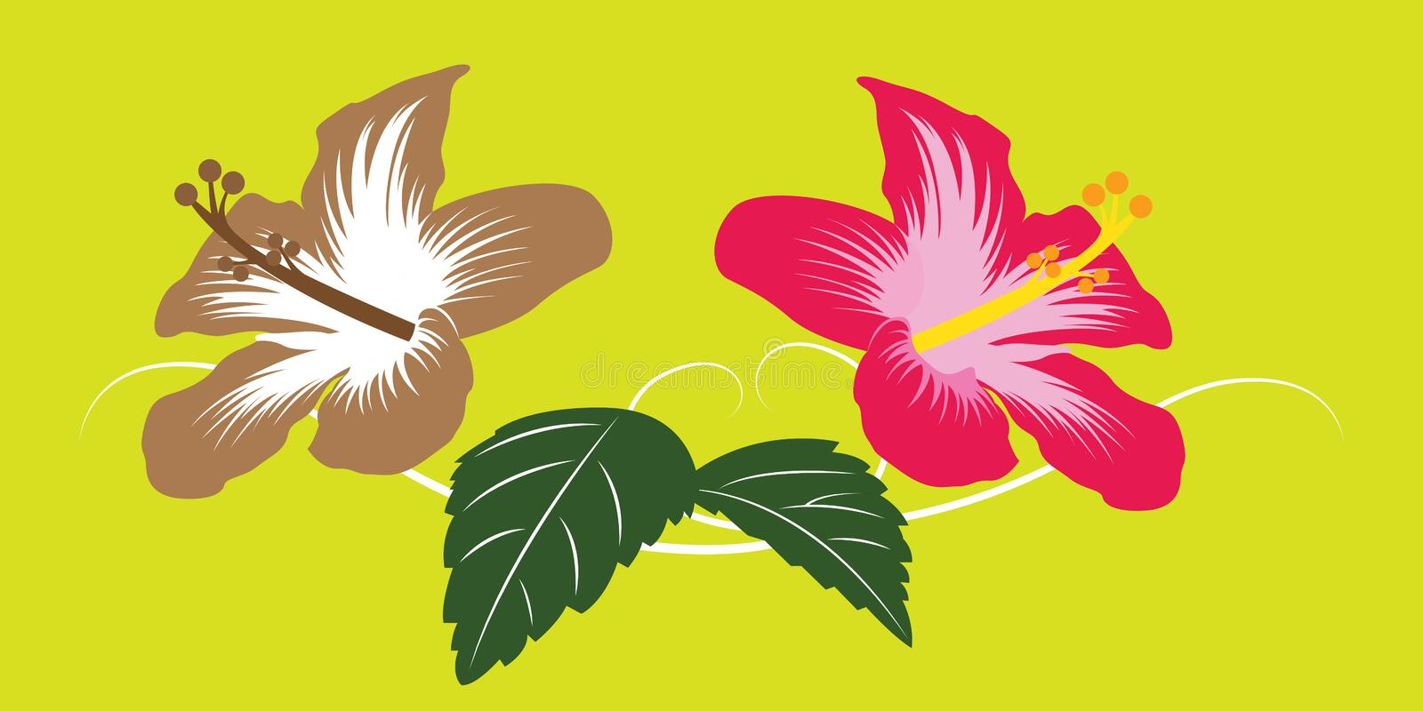 Flower asia stock illustration. Illustration of graphic ...