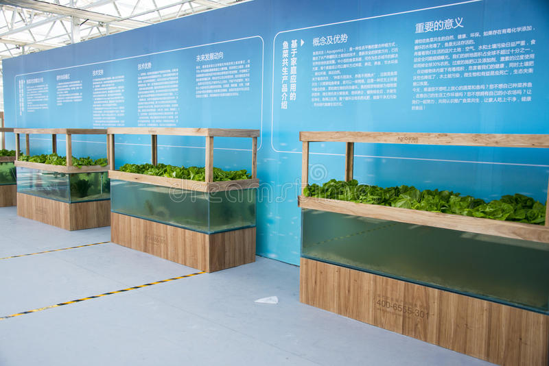 Asia China, Beijing, agricultural carnival,Greenhouse planting. Beijing agricultural carnival is a new exploration and practice to expand the form, development stock image
